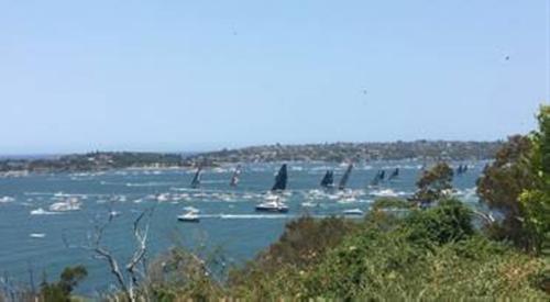 Australia harbour beach side view